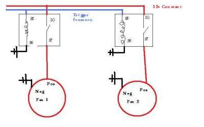 El Falcon Thermo Fan Wiring Diagram Wiring Diagrams Database – Thermo Fan Wiring Diagram