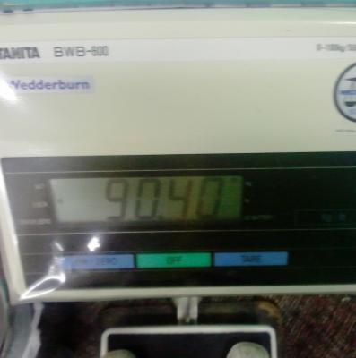 90kg-pic1.jpg